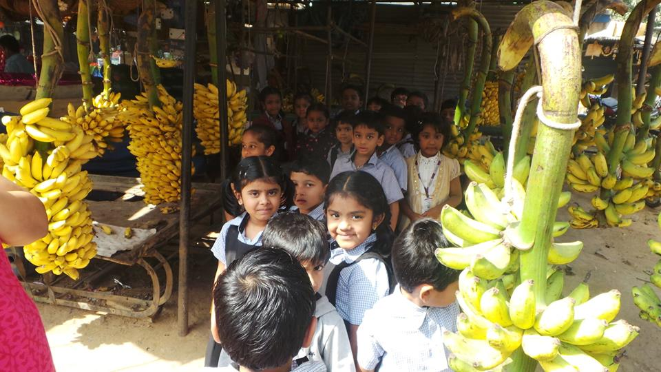 Pre primary Filed trip (Vegetable market).